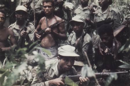 Papoea Vrijwilleger Korps